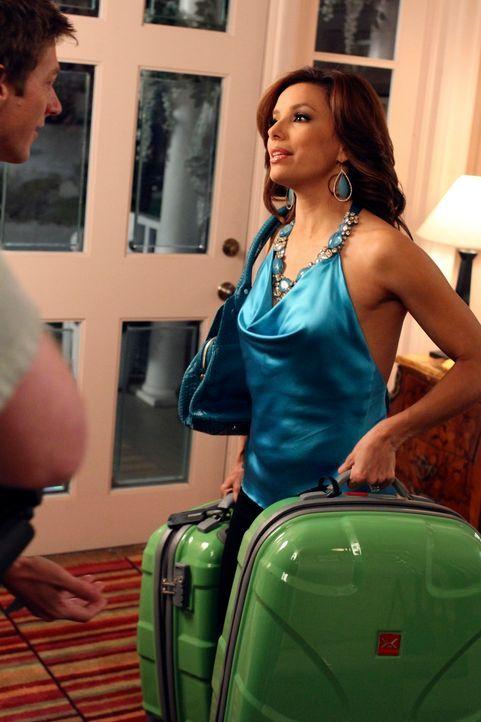 Während Katherine feststellt, dass sie sich von Robin angezogen fühlt, zieht Gabrielle (Eva Longoria, r.) bei Lee (Kevin Rahm, l.) und Bob ein ... - Bildquelle: ABC Studios