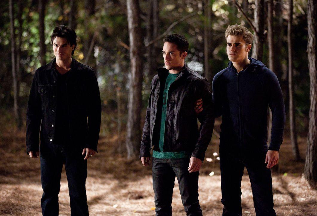 Damon (Ian Somerhalder, l.) und Stefan (Paul Wesley, r.) wollen durch Tylers (Michael Trevino, M.) Gefangennahme Carolines Freigabe erpressen. Doch... - Bildquelle: Warner Brothers