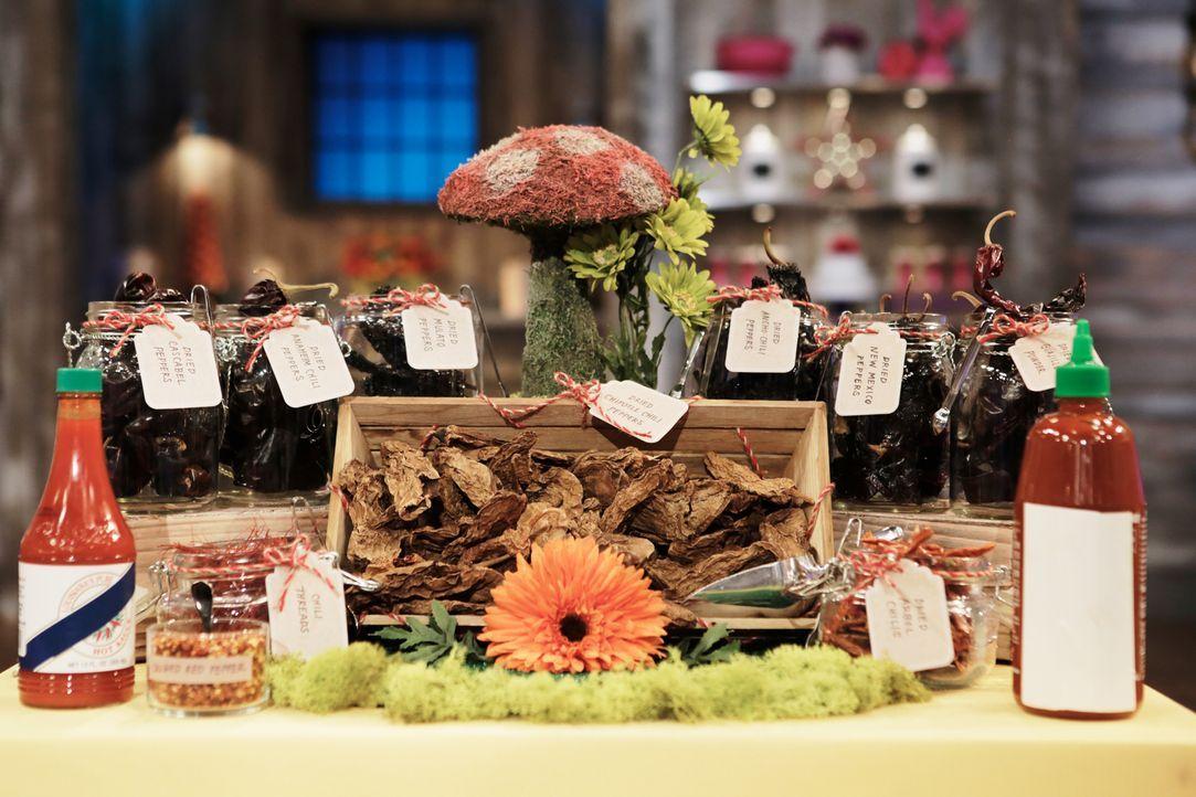 Diese Chilischoten und Gewürze haben es in sich und sollen von den jungen Bäckern zur Verfeinerung ihrer Schokoladengebäcke verwendet werden ... - Bildquelle: Adam Rose 2015, Television Food Network, G.P.  All Rights Reserved.