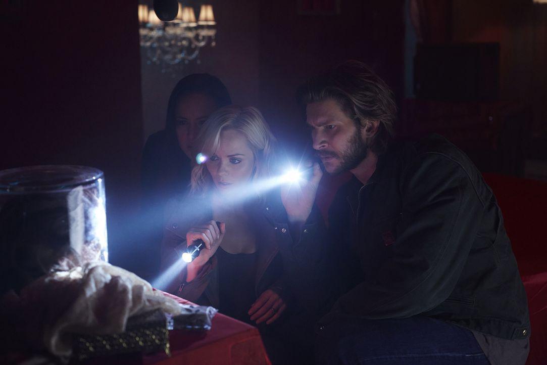 Machen bei Clara eine erstaunliche Entdeckung: Paige (Tommie-Amber Pirie, l.), Elena (Laura Vandervoort, M.) und Clay (Greyston Holt, r.) ... - Bildquelle: 2015 She-Wolf Season 2 Productions Inc.