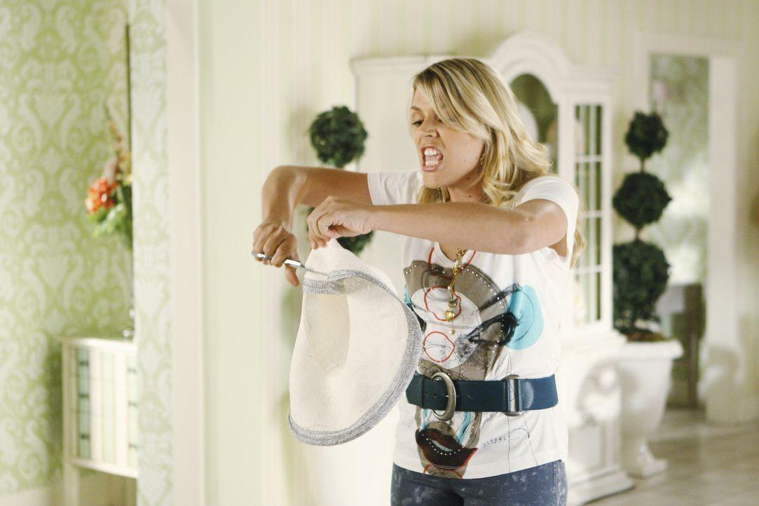 Laurie (Busy Phillips) hat eine heftige Auseinandersetzung mit Ellie, in deren Verlauf sie ihren Strohhut zerschneidet. Ellie schwört Rache ... - Bildquelle: 2009 ABC INC.