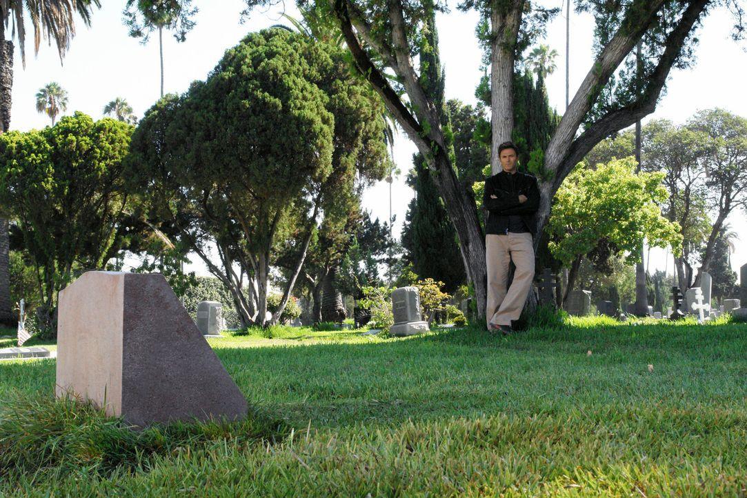 Pete (Tim Daly) besucht seine Frau an deren Grab und entschuldigt sich bei ihr dafür, dass er sie nicht retten konnte ... - Bildquelle: 2007 American Broadcasting Companies, Inc. All rights reserved.