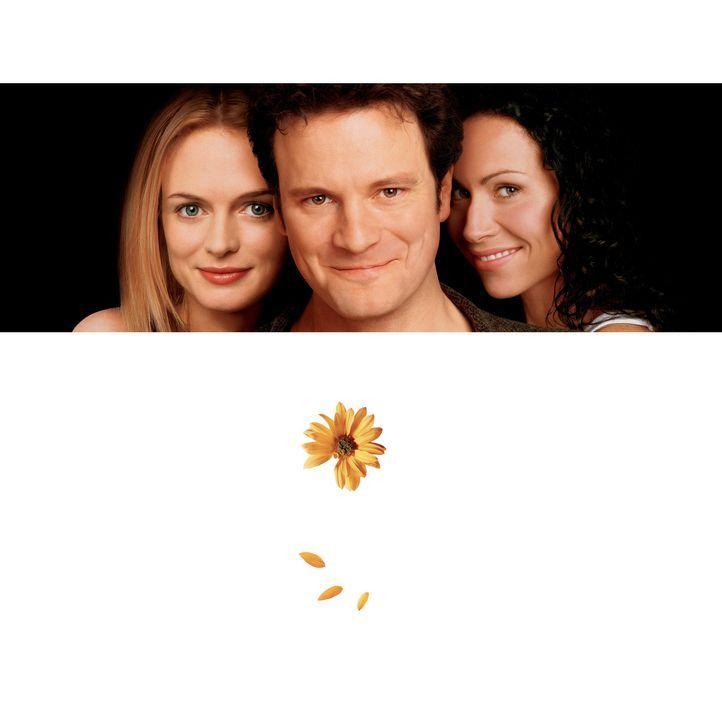 Gerade als Colin (Colin Firth, l.) sich in die unbekümmerte Mandy (Heather Graham, l.) verliebt, steht seine Ex (Minnie Driver, r.) auf der Matte u... - Bildquelle: Disney