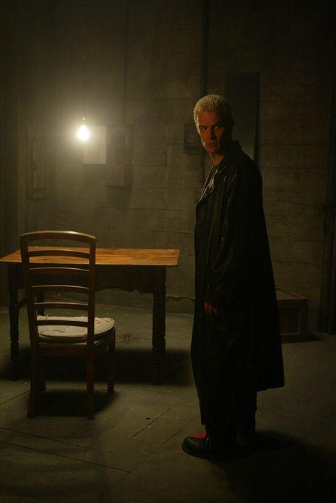 Eine geheimnisvolle Stimme lockt Spike (James Marsters) in den Keller ... - Bildquelle: The WB Television Network
