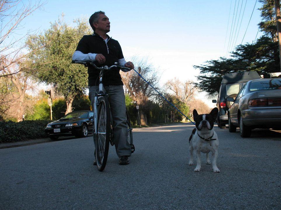 Kann Cesar Millan die aggressive Bulldogge Bozley wieder gesellschaftsfähig machen? - Bildquelle: Rive Gauche Intern. Television
