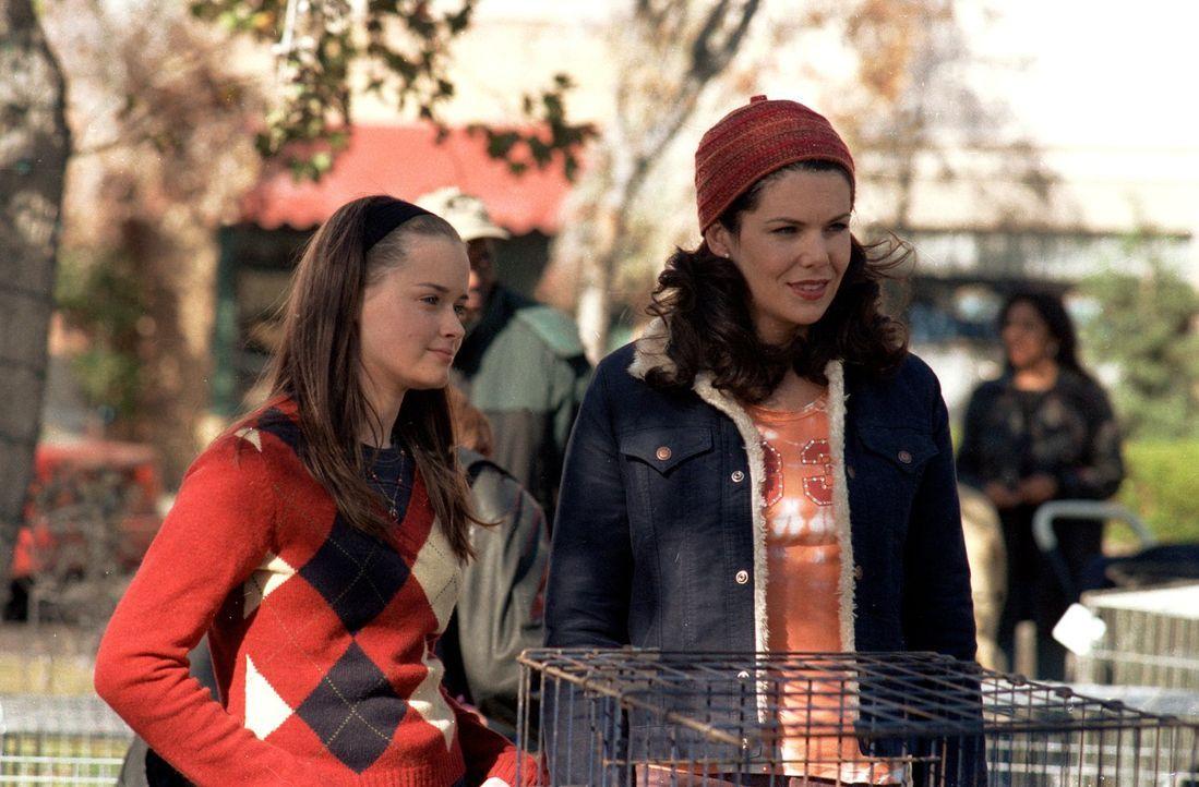 Eigentlich ist Lorelei (Lauren Graham, r.) überglücklich mit Max, doch als Rory (Alexis Bledel, l.) vorschlägt, mal etwas zu dritt zu unternehmen, b... - Bildquelle: 2000 Warner Bros.