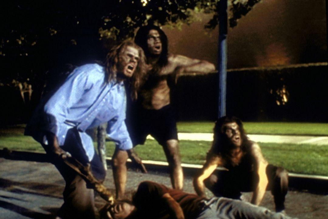 (v.l.n.r.) Die vier Studenten Colm (Eric Matheny), Hunt (Kal Penn), Kip (Jake Phillips) und Roy (Bryan Cuprill) haben sich nach exzessivem Biergenus... - Bildquelle: TM +   2000 Twentieth Century Fox Film Corporation. All Rights Reserved.