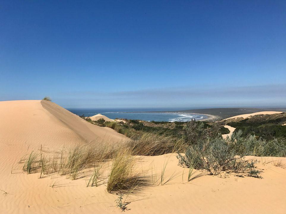"""Die """"Drachendüne"""" in der Nähe von """"Mossel Bay"""" ist die größte Sanddüne Südafrikas. Sie eignet sich somit perfekt zum """"Sandsurfen"""", bietet aber auch... - Bildquelle: 2017,The Travel Channel, L.L.C. All Rights Reserved"""