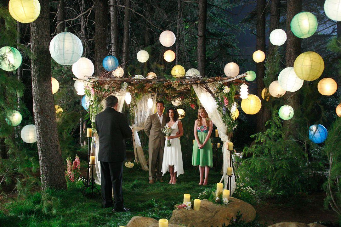 Unter einem Vorwand wird Mike (James Denton, 2.v.l.) zu einem Platz in den Wald gebracht, wo bereits Susan (Teri Hatcher, 2.v.r.) und Julie (Andrea... - Bildquelle: 2005 Touchstone Television  All Rights Reserved