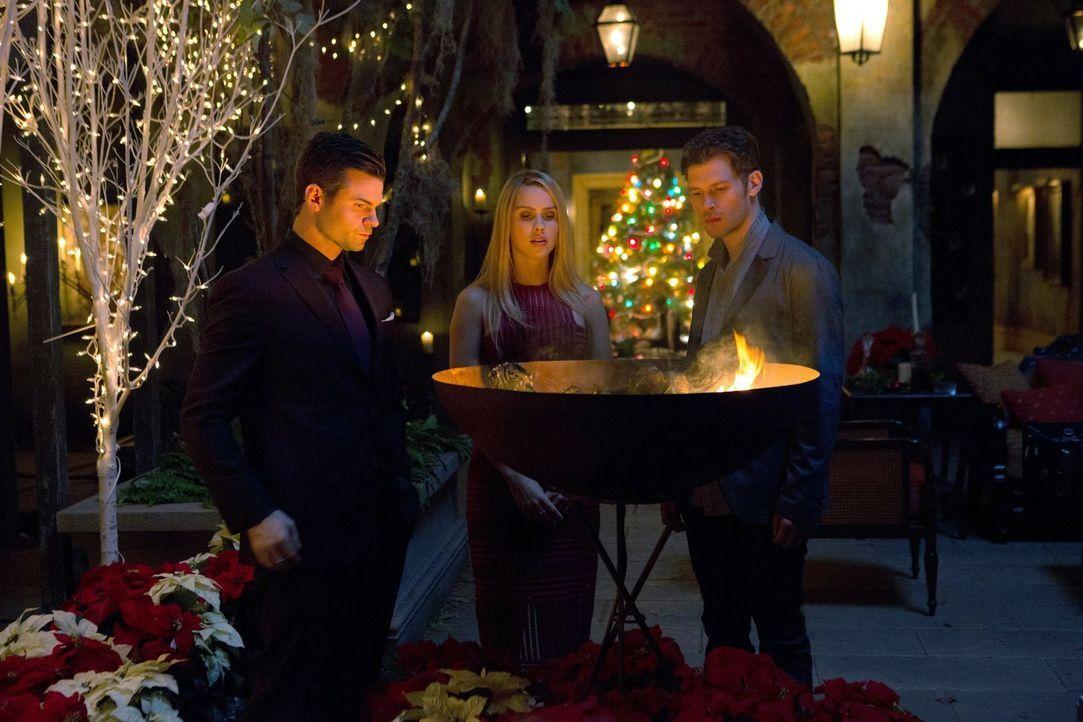 Die Prophezeiung stellt Elijah (Daniel Gillies, l.), Rebekah (Claire Holt, M.) und Klaus (Joseph Morgan, r.) immer wieder vor Herausforderungen, abe... - Bildquelle: Warner Bros. Entertainment Inc.
