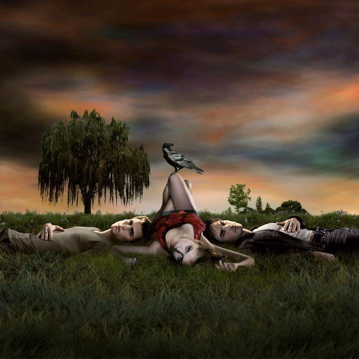 (1. Staffel) - Stefans (Paul Wesley, l.) älterer Bruder Damon (Ian Somerhalder, r.) beschließt, die hübsche Elena (Nina Dobrev, M.) besitzen zu woll... - Bildquelle: Warner Brothers