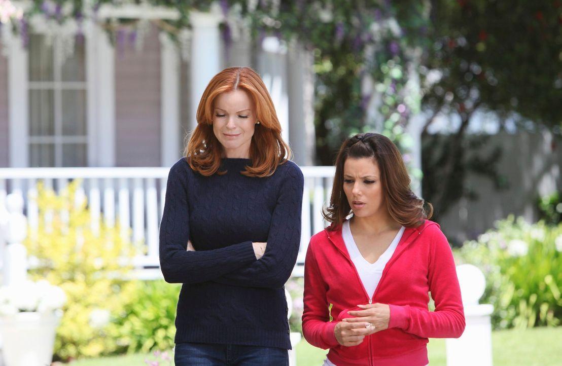 Nach alldem was geschehen ist, entschließt sich Bree (Marcia Cross, l.) Gabrielle (Eva Longoria, r.) ein lange gehütetes Geheimnis zu beichten, was... - Bildquelle: ABC Studios