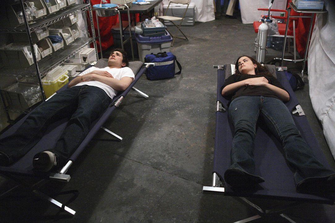 Sie haben beide keinen Bauchnabel, dafür besitzen sie jedoch übernatürliche Fähigkeiten: Kyle (Matt Dallas, l.) und Jessi (Jaimie Alexander, r.). - Bildquelle: TOUCHSTONE TELEVISION