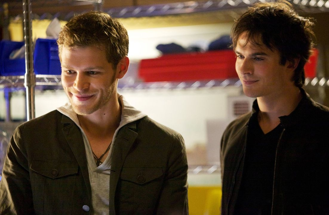 Ein gemeinsamer Feind schweißt sogar Feinde zusammen:  Klaus (Joseph Morgan, l.) und Damon (Ian Somerhalder, r.) ... - Bildquelle: Warner Brothers