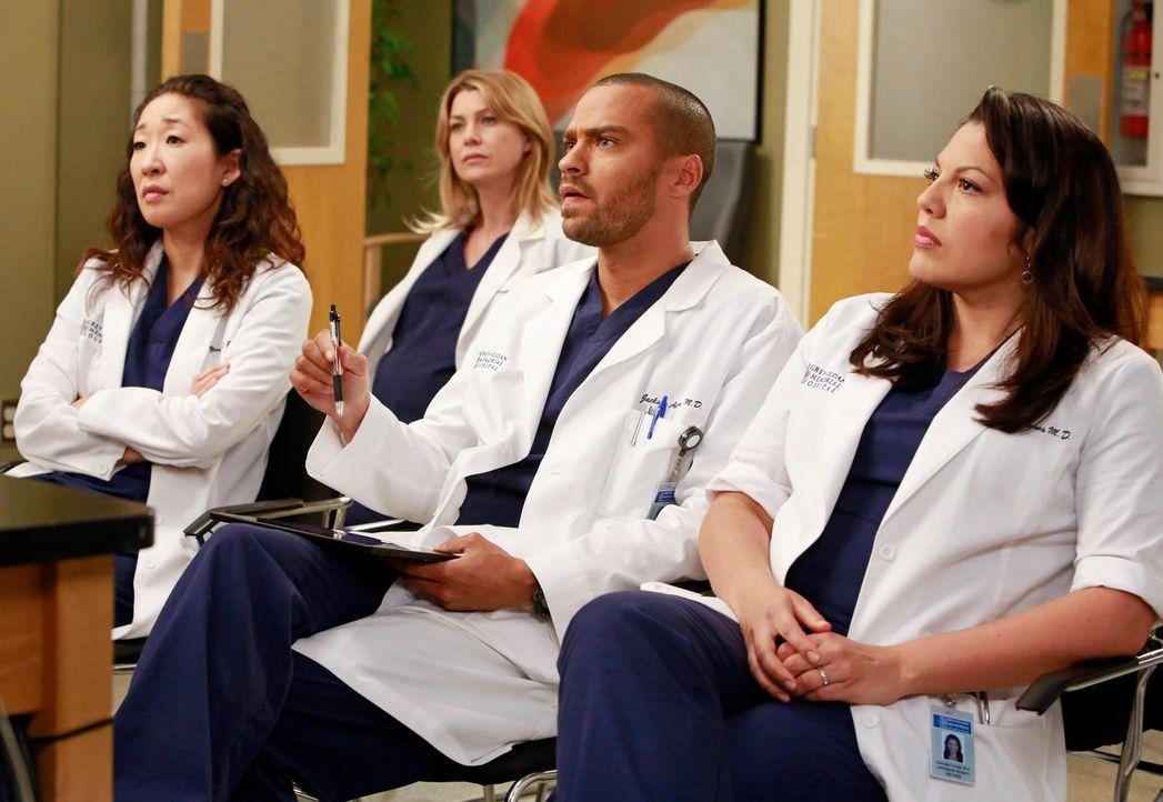 Christina (Sandra Oh, l.), Meredith (Ellen Pompeo, 2.v.l.), Jackson (Jesse Williams, 2.v.r.) und Callie (Sara Ramirez, r.) bereiten sich auf ihren E... - Bildquelle: ABC Studios