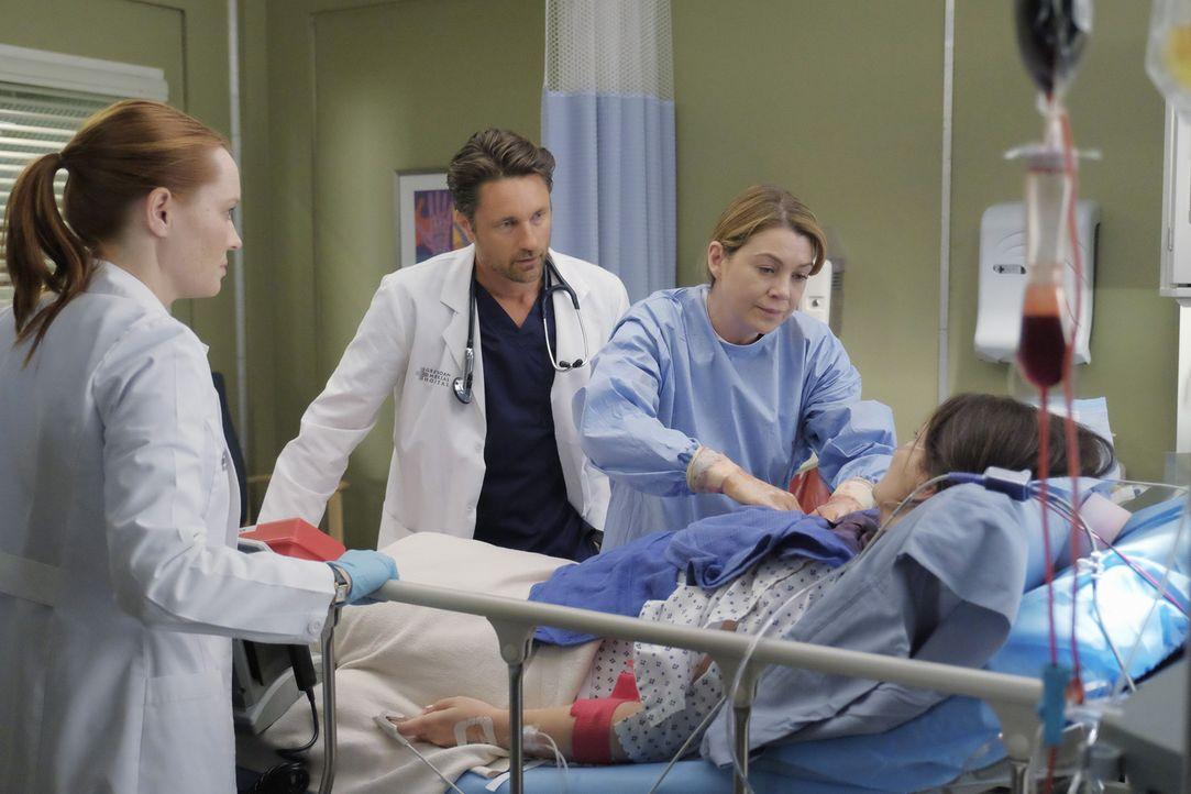 Kämpfen um das Leben von Daphne (Meredith Salenger, r.): Meredith (Ellen Pompeo, 2.v.r.), Riggs (Martin Henderson, 2.v.l.) und Blake (Samantha Sloya... - Bildquelle: Tony Rivetti ABC Studios