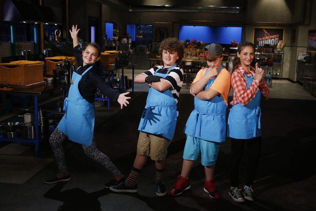 Vier ehrgeizige Junior-Köche stellen sich der Chopped-Jury und wollen ihre Kochkünste unter Beweis stellen: (v.l.n.r.) Talia Thessen, Jack Crabb, Ma... - Bildquelle: Jason DeCrow 2015, Television Food Network, G.P. All Rights Reserved