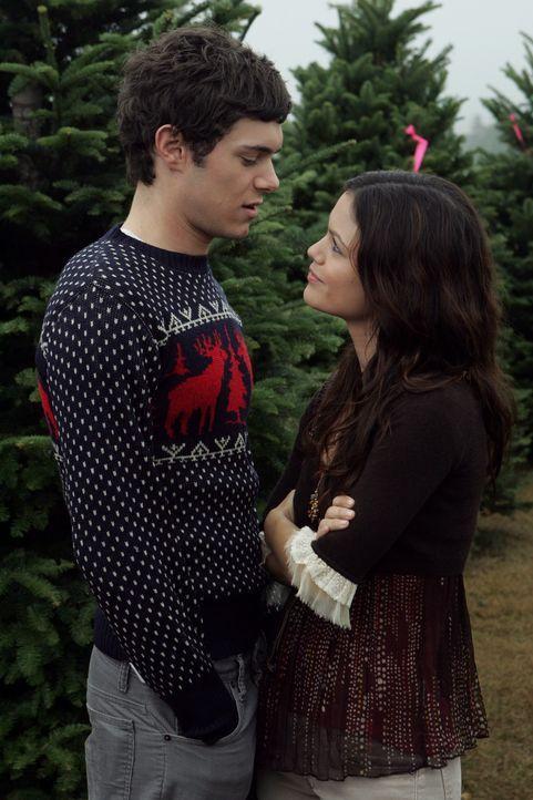 Freuen sich auf die bevorstehende Feier: Seth (Adam Brody, l.) und Summer, (Rachel Bilson, r.) ... - Bildquelle: Warner Bros. Television