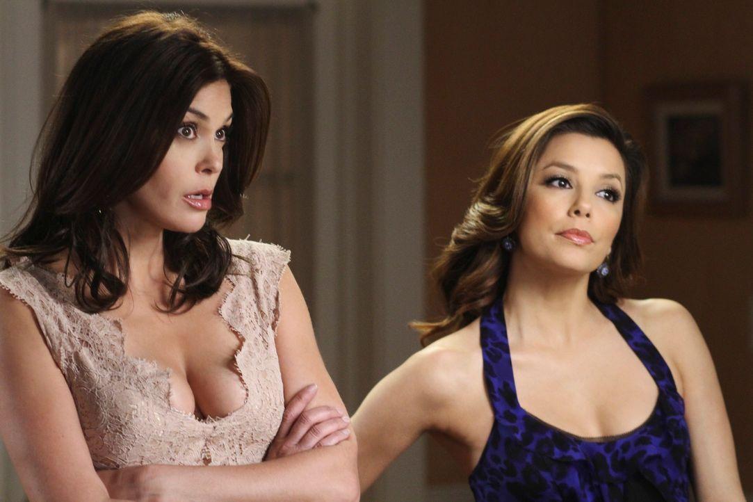 Gabrielle (Eva Longoria, r.) erfährt von Carlos' Geschäftsführer, dass er Mike 50.000 Dollar geliehen hat und ihr deshalb keine Skihütte kaufen kann... - Bildquelle: ABC Studios