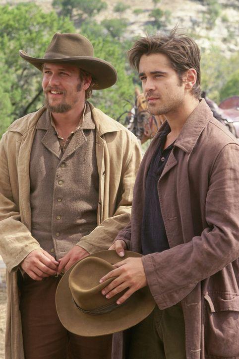 Zusammen mit ihren Freunden lehren die Brüder Frank (Gabriel Macht) und Jesse James (Colin Farrell) die Eisenbahngesellschaft das Fürchten ... - Bildquelle: Warner Bros.