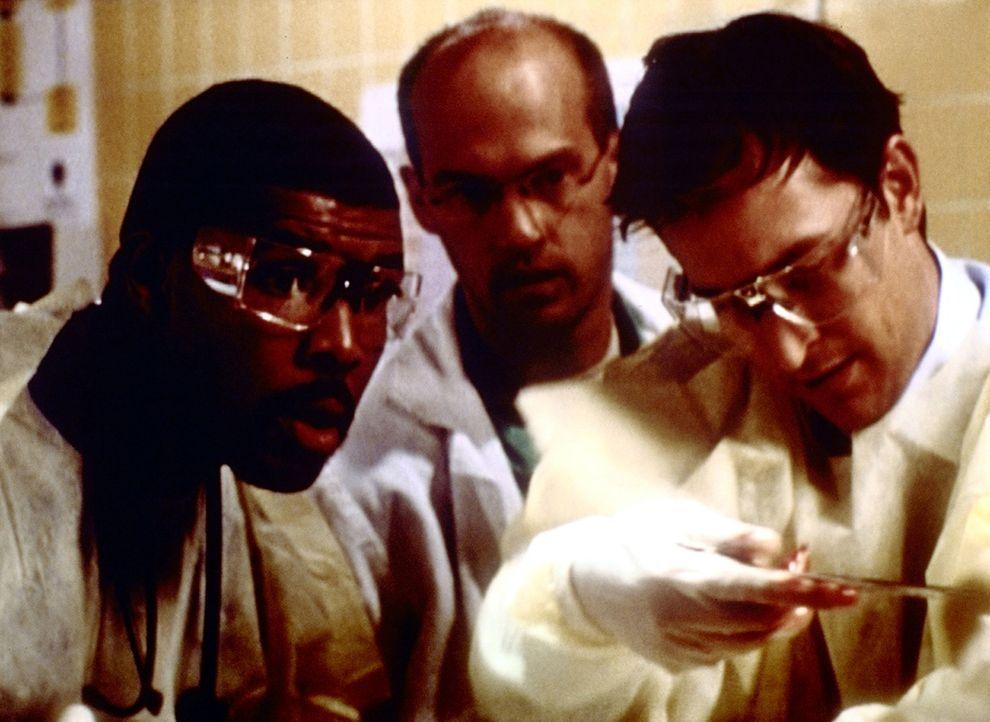 (v.l.n.r.) Benton (Eriq LaSalle), Carter (Noah Wyle) und Greene (Anthony Edwards) haben noch rechtzeitig einen Jungen vor dem sicheren Tod gerettet. - Bildquelle: TM+  2000 WARNER BROS.