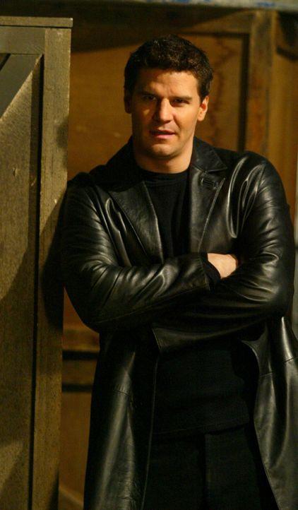 Angelus (David Boreanaz) ist frei. Lilah wurde von Cordelia umgebracht, doch alle glauben, dass Angelus es getan hat ... - Bildquelle: The WB Television Network