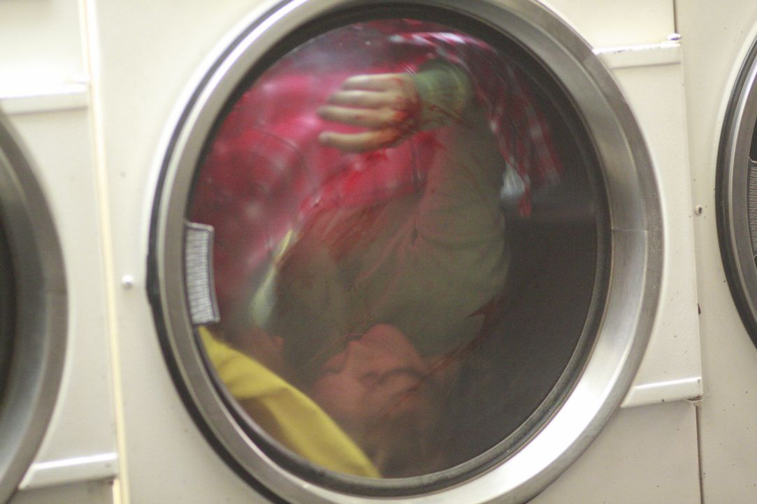 Ein wirklich grausamer Mordfall: Die Nanny Sara Manning (Mandy Kowalski) wird tot im Trockner eines Waschkellers gefunden ... - Bildquelle: 2008 American Broadcasting Companies, Inc. All rights reserved
