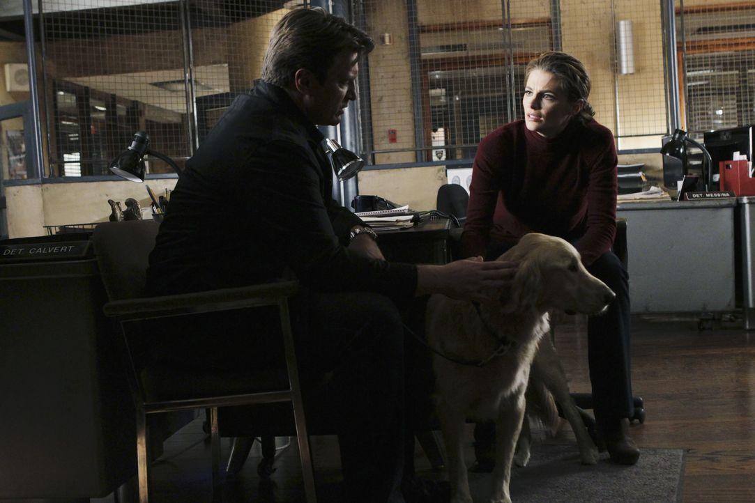 Kate Beckett (Stana Katic, r.) und Richard Castle (Nathan Fillion, l.) müssen feststellen, dass der ermordete Hundetrainer mit Vierbeinern sehr gut... - Bildquelle: ABC Studios