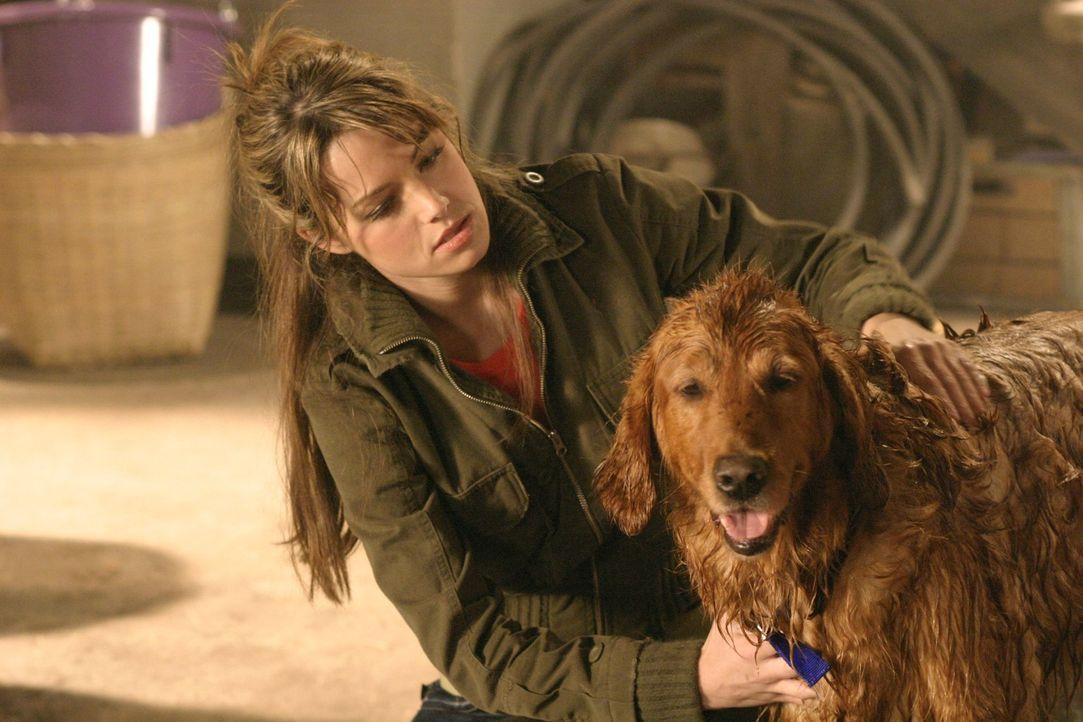 Als Lois (Erica Durance) versehentlich einen Hund anfährt und ihn zu den Kents bringt, ahnt niemand, dass der Hund ein dunkles Geheimnis in sich trä... - Bildquelle: Warner Bros.