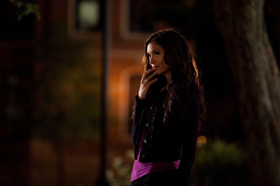 Gemein, hinterhältig und intrigant?.was führt sie diesmal im Schilde? Katherine (Nina Dobrev)... - Bildquelle: Warner Brothers