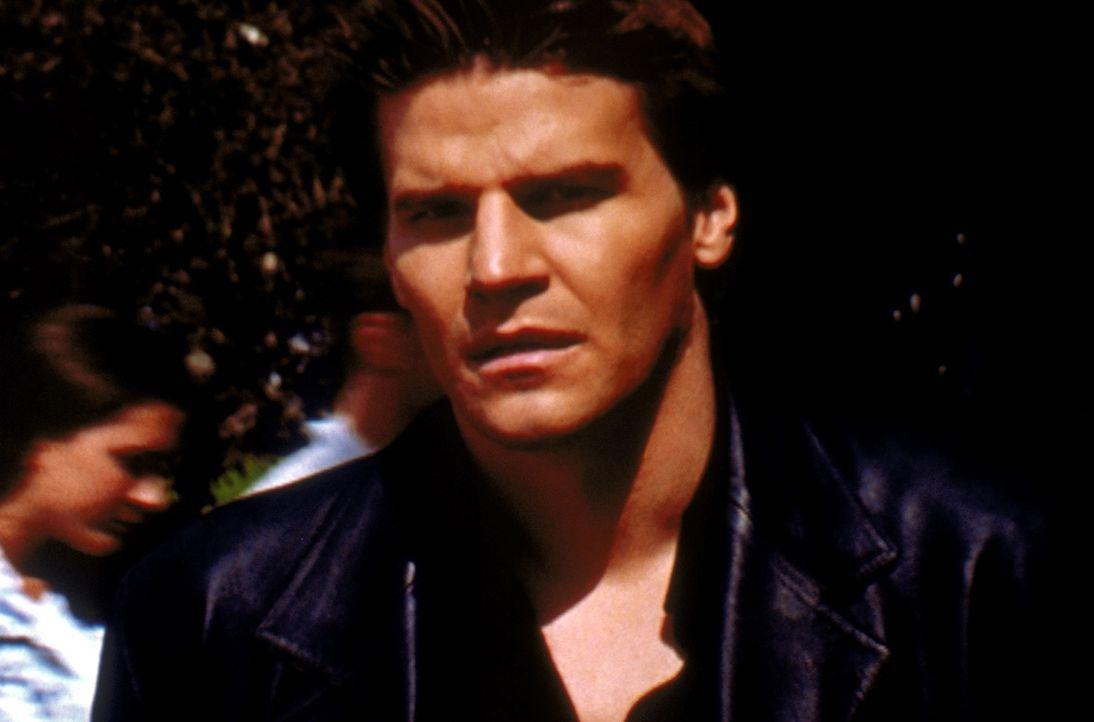 Angel (David Boreanaz) kann sich im Sonnenlicht aufhalten, ohne zu verbrennen, denn er ist vorübergehend zum Menschen geworden ... - Bildquelle: TM +   2000 Twentieth Century Fox Film Corporation. All Rights Reserved.