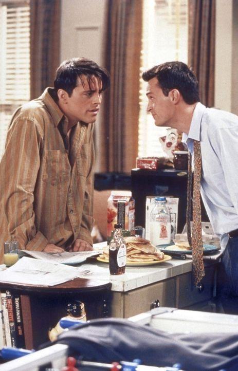 Joey (Matt LeBlanc, l.) und Chandler (Matthew Perry, r.) führen eine spannende Unterhaltung ... - Bildquelle: TM+  2000 WARNER BROS.