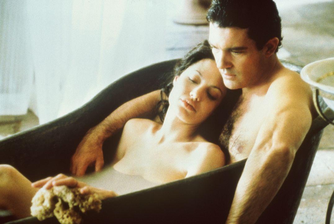 Während Luis Antonio Vargas (Antonio Banderas, r.) versucht, Julia Russells (Angelina Jolie, l.) Herz zu erobern, sorgt die ebenso bezaubernde wie... - Bildquelle: Metro-Goldwyn-Mayer Distributing Corporation