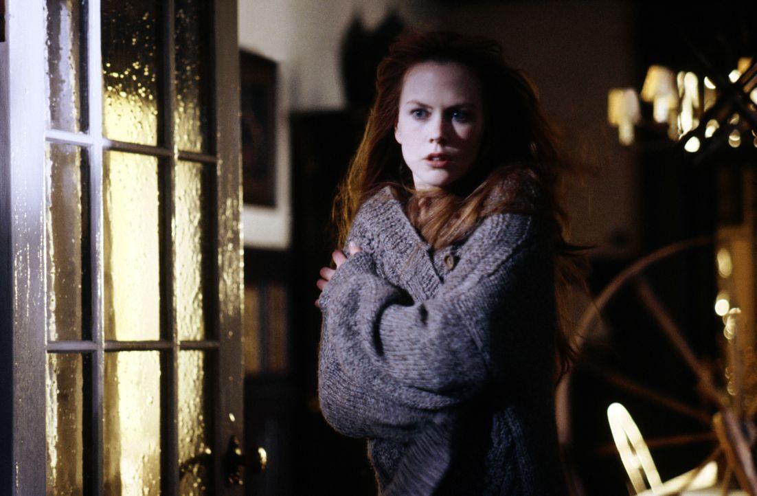 Auf den Hexenschwestern Gillian (Nicole Kidman) und Sally lastet ein jahrhunderte langer Fluch. Wer sich in eine der Owens-Frauen verliebt, segnet n... - Bildquelle: Warner Brothers