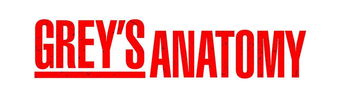 GREY'S ANATOMY - Logo - Bildquelle: Touchstone Television
