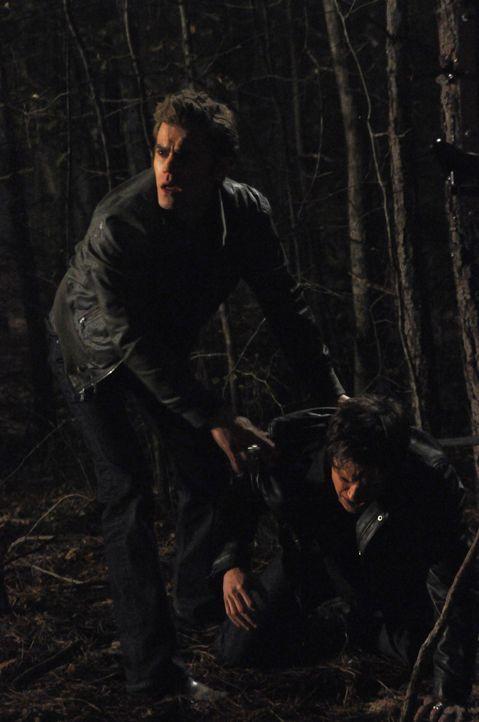 Stefan (Paul Wesley, l.) eilt seinem Bruder Damon Salvatore (Ian Somerhalder, r.) zur Hilfe. - Bildquelle: Warner Brothers
