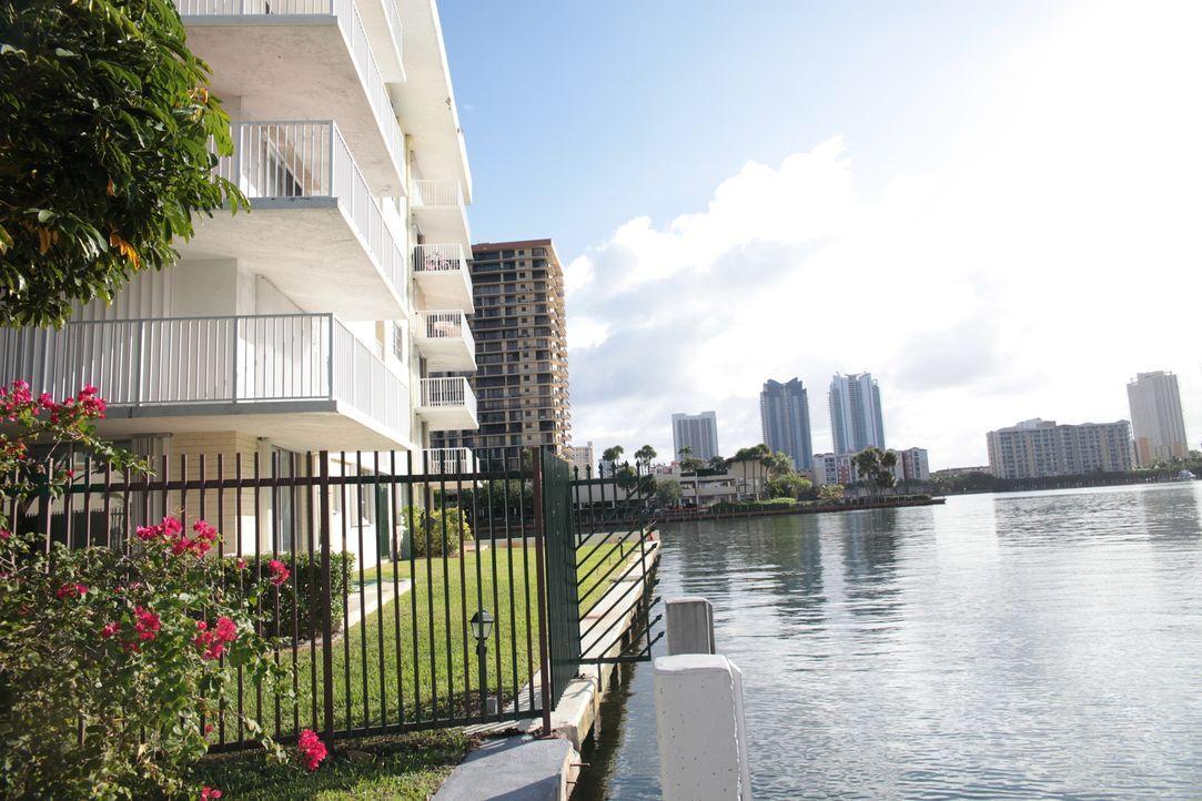 Können Stephen Wechsler und Immobilienmakler Alon Oami die perfekte Wohnung für das Budget von $300.000 finden? - Bildquelle: 2014,HGTV/Scripps Networks, LLC. All Rights Reserved