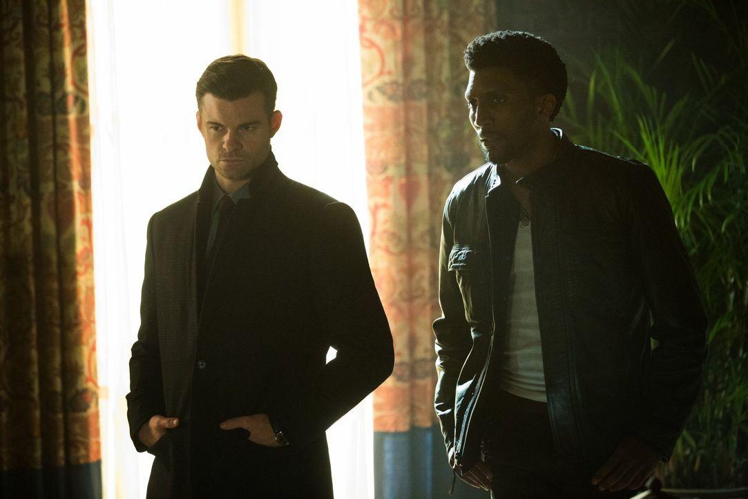 Während Elijah (Daniel Gillies, l.) zusammen mit Hayley in den Sümpfen nach einem Weg suchen, Cami zu retten, hoffen Vincent (Yusuf Gatewood, r.) un... - Bildquelle: Warner Bros. Entertainment, Inc.