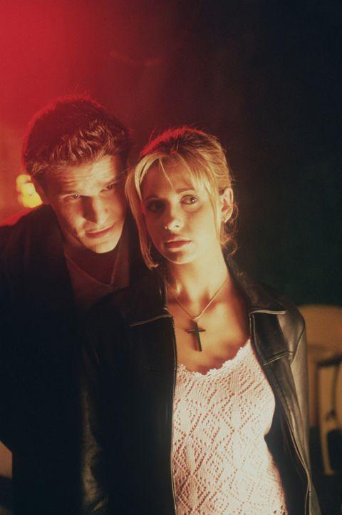 Angel (David Boreanaz, l.) warnt Buffy (Sarah Michelle Gellar, r. ) - denn der Kampf gegen das Böse ist noch lange nicht beendet ... - Bildquelle: (1998) Twentieth Century Fox Film Corporation.