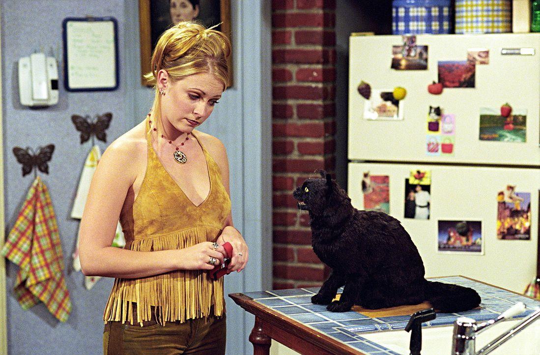Ein schwerer Gang: Sabrina (Melissa Joan Hart) soll sich auf offener Bühne bei Rock-Star Strum entschuldigen ... - Bildquelle: Paramount Pictures
