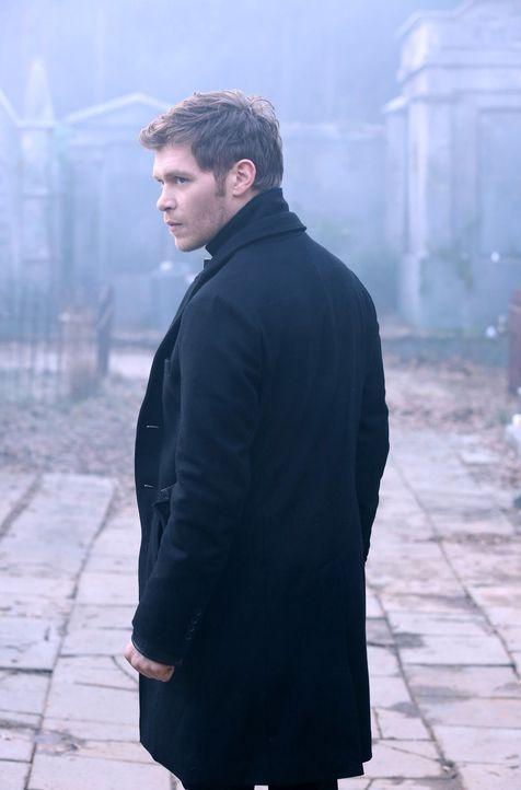 Klaus (Joseph Morgan) will sich die Werwolf-Armee zu Nutze machen, doch dafür muss er erst einmal Hayley von seinem Plan überzeugen ... - Bildquelle: Warner Bros. Entertainment, Inc