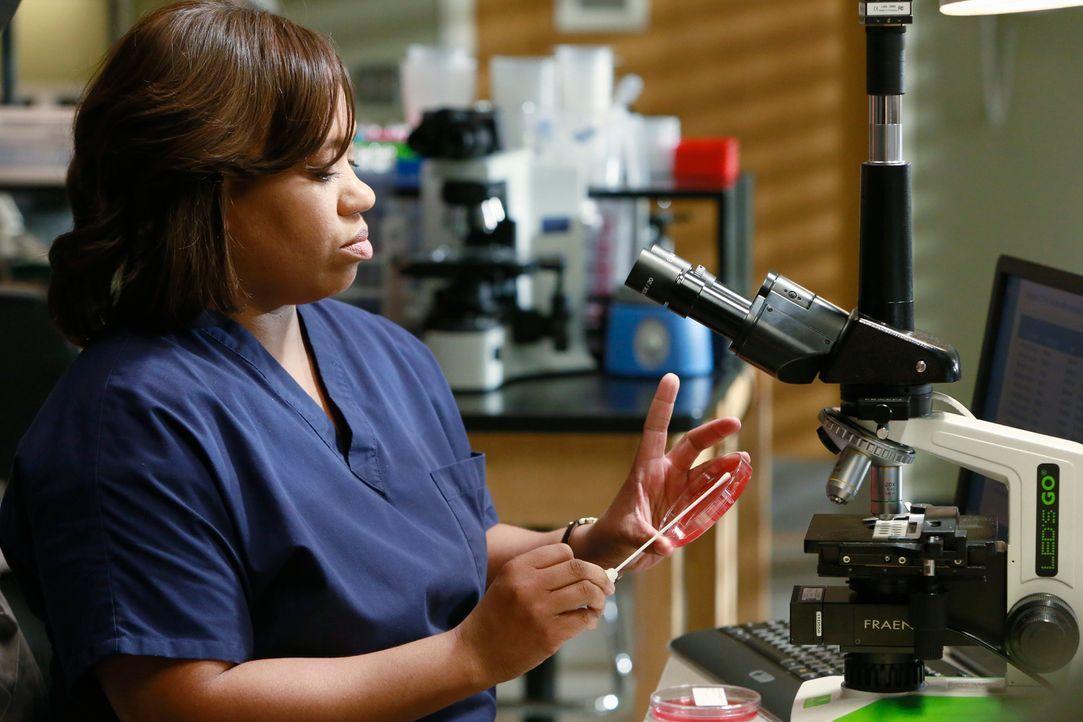 Bailey (Chandra Wilson) zieht sich in ihr Labor zurück und lehnt jegliche Annäherungsversuche ihrer Kollegen ab. Sie ist gekränkt ... - Bildquelle: ABC Studios