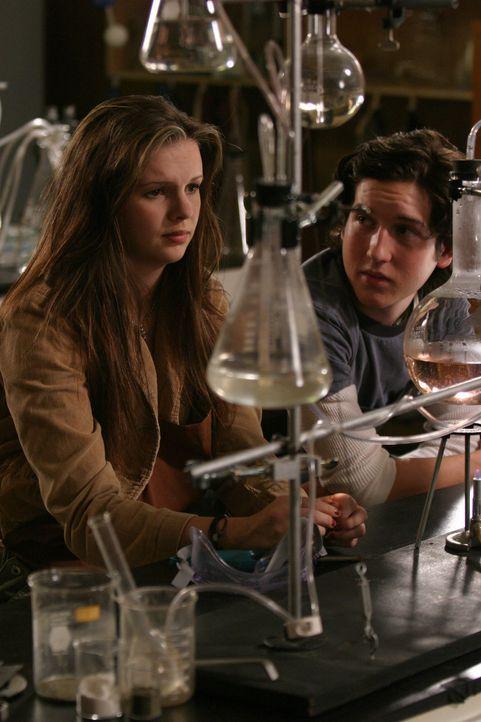 Ein gemeinsames Chemieprojekt: Joan (Amber Tamblyn, l.) und Adam (Christopher Marquette, r.) ... - Bildquelle: Sony Pictures Television