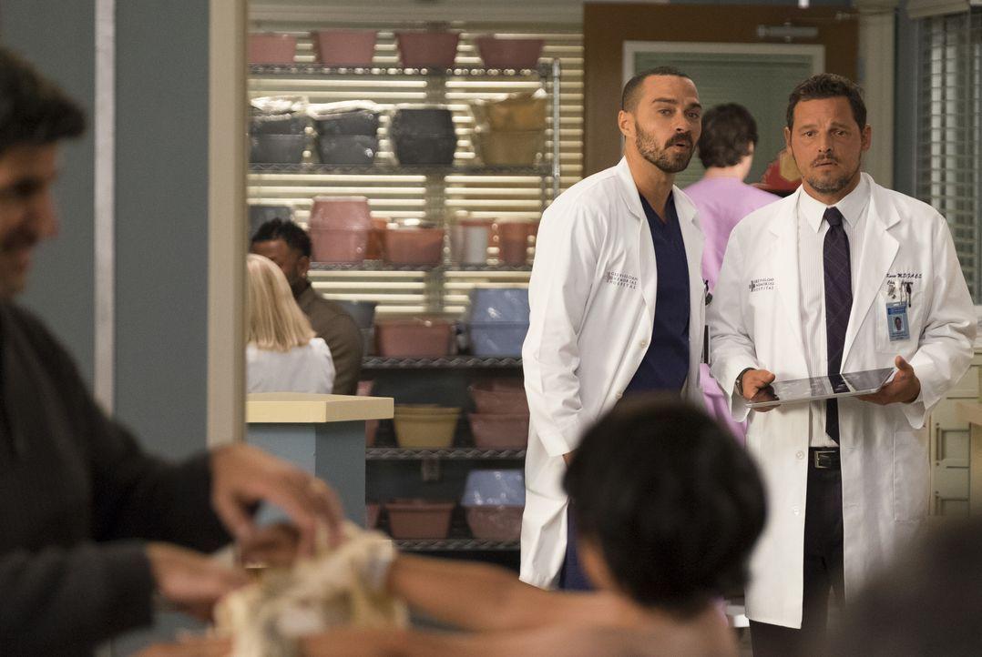 Dr. Jackson Avery (Jesse Williams, l.); Dr. Alex Karev (Justin Chambers, r.) - Bildquelle: John Fleenor ABC Studios / John Fleenor