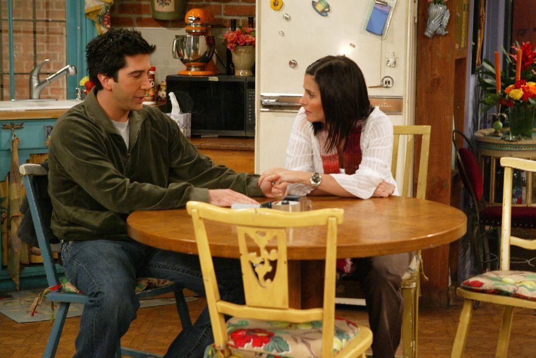 Ross (David Schwimmer, l.) kann nicht fassen, dass Rachel wirklich nach Paris ziehen will und schüttet seine Herz bei Monica (Courteney Cox, r.) aus... - Bildquelle: Warner Bros. Television