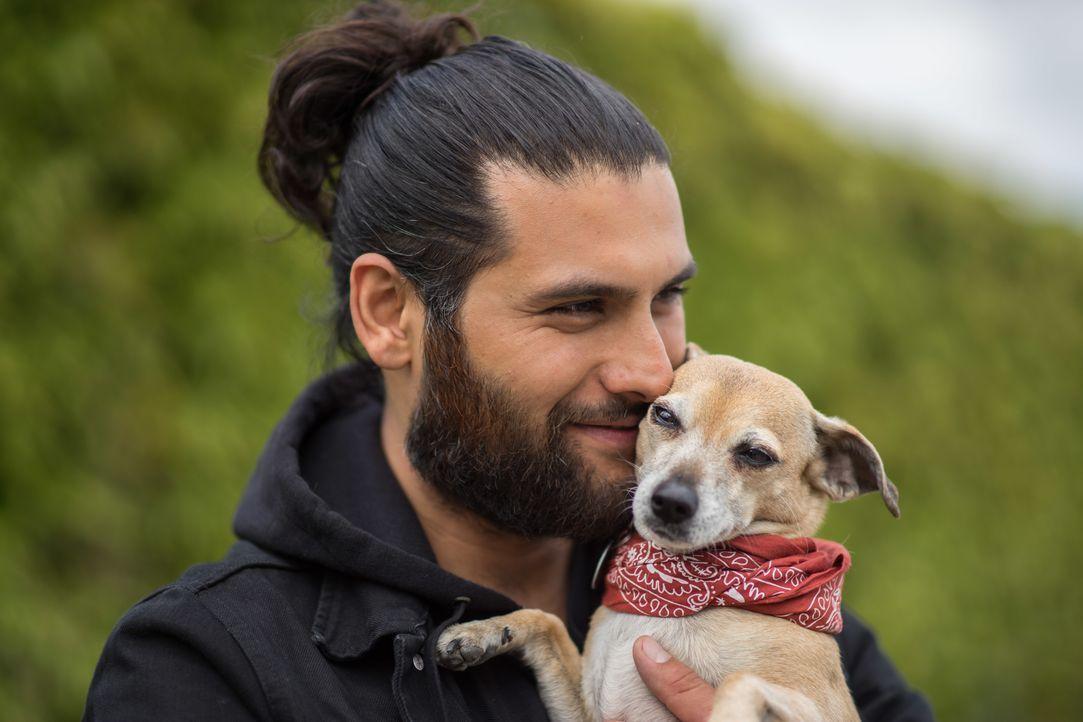 Damit aus einem Hund aus dem Tierheim ein Superhund werden kann, muss die Chemie zwischen Zwei- und Vierbeiner stimmen - dafür ist Hundeverhaltensth... - Bildquelle: SAT.1