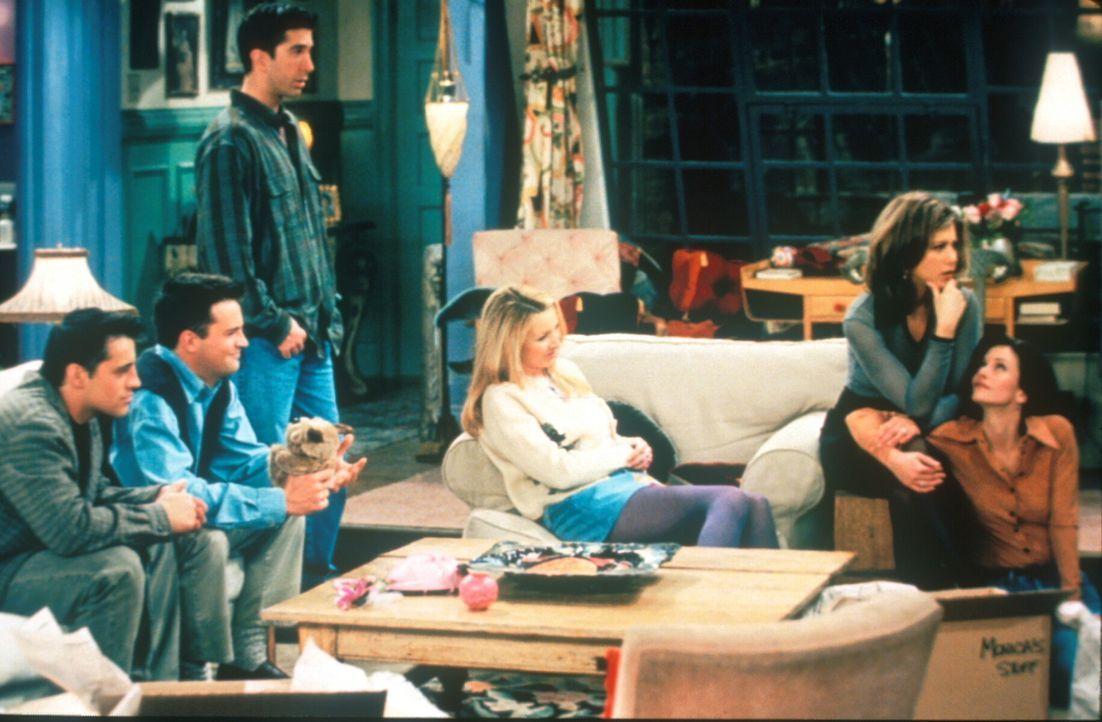 Monica (Courteney Cox, r.) und Ross (David Schwimmer, 3.v.l.) sehen sich zusammen mit ihren Freunden (v.l.n.r.) Joey (Matt LeBlanc), Chandler (Matth... - Bildquelle: TM+  2000 WARNER BROS.
