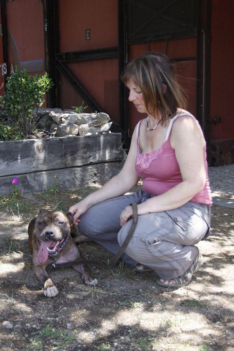 Bei Christine Jordan scheint sich Rosie richtig wohl zu fühlen, aber Cesar muss schlussendlich entscheiden, wo es die liebenswerte Hündin am beste... - Bildquelle: Belén Ruiz Lanzas 360 Powwow, LLC / Belén Ruiz Lanzas