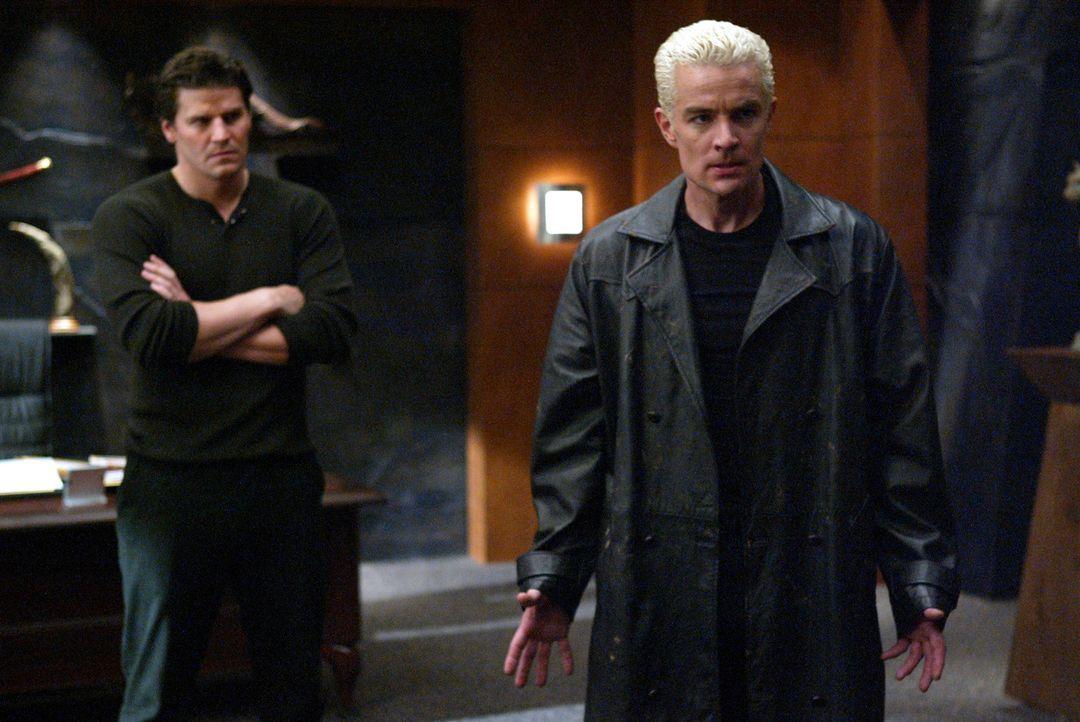 Spike (James Marsters, r.) fällt Angel (David Boreanaz, l.) mit seiner Anwesenheit und seinen sarkastischen Kommentaren auf den Wecker ... - Bildquelle: The WB Television Network