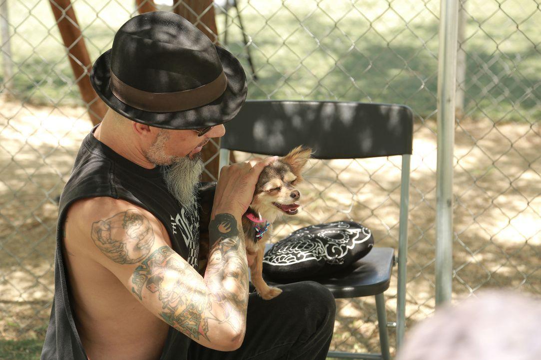 Während sich Ruckus in seinem Privatleben gerne um Hunde kümmert, bekommt er es in seinem Berufsleben mit Affen zu tun ... - Bildquelle: 2013 A+E Networks, LLC